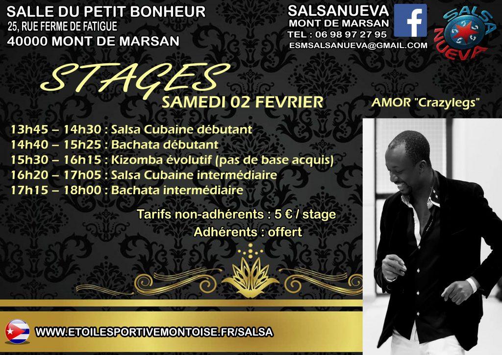 Affiche Stages 02 Février 2019 Amor Crazylegs